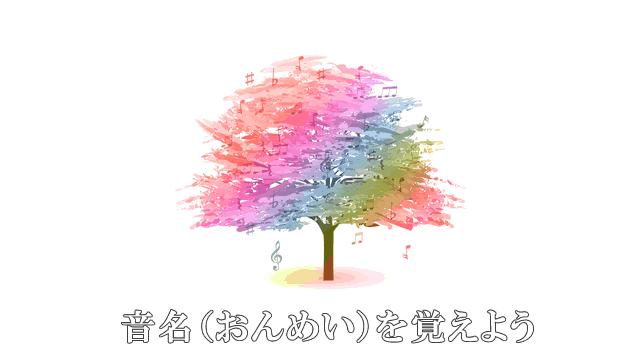 音楽の木と音名